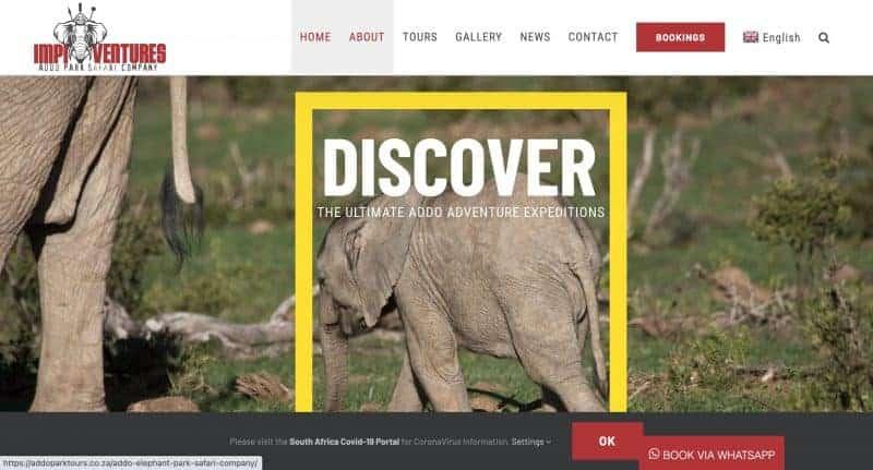 tour company website design