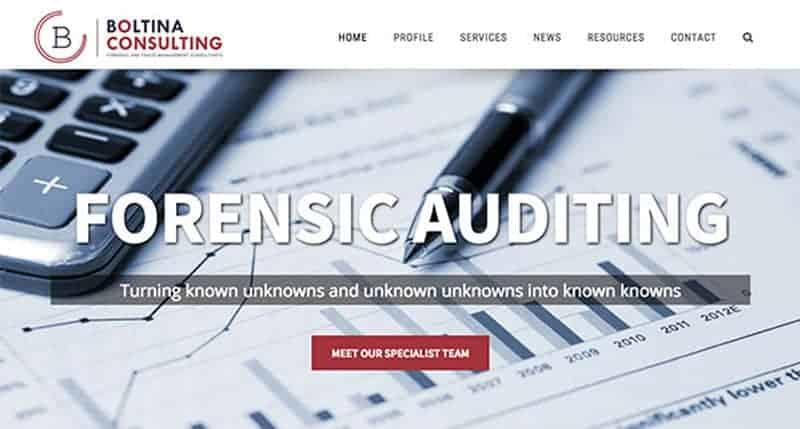 auditor-website-design