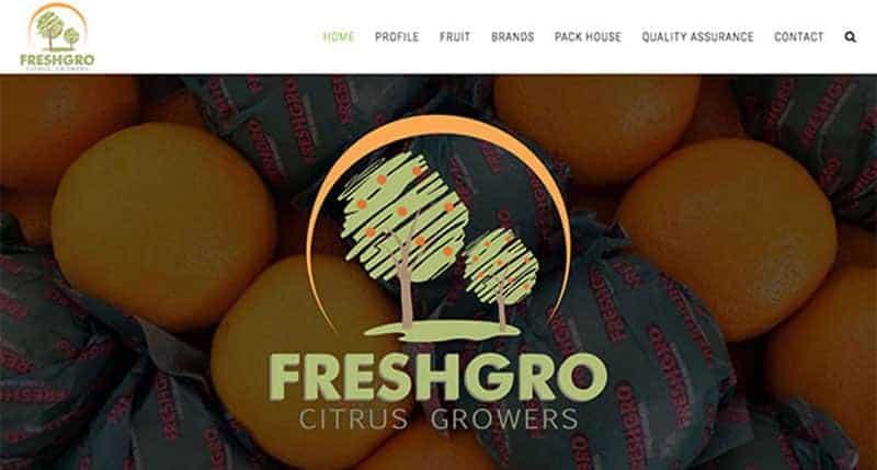 fruit export website design