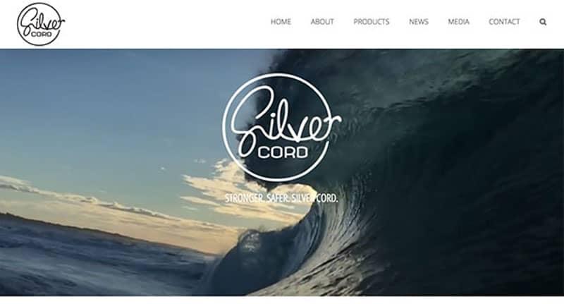surfing website design