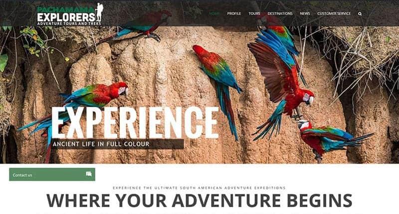 travel-website-design