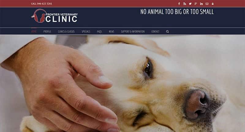 vet-website-design